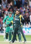 Shahid Afridi celebrates a wicket